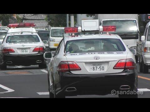 上から目線『進路ゆずれ!』和歌山県警パトカー緊急走行で大集合