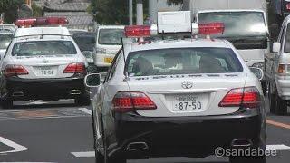 上から目線『進路ゆずれ!』和歌山県警パトカー緊急走行で大集合 thumbnail