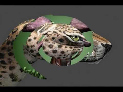 ღ☆ღArt in Defense of Animalsღ☆ღ.mpg