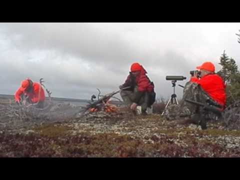 Caribou Hunting Manitoba, Canada 2009 By GuideCam