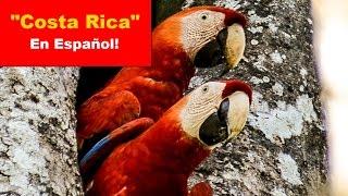 """""""Costa Rica"""" - En español !"""
