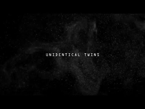 John Ellis - Unidentical Twin  [Gondwana Records]