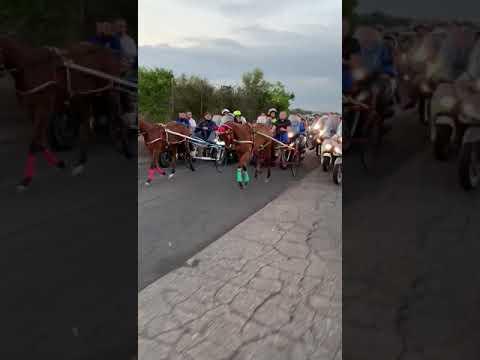 Corsa clandestina cavalli