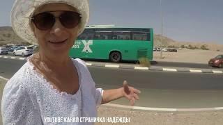 Мы в Эйлате - Красное море, ДЕЛЬФИНЫ морковный сок и ЖАРА Ч-2