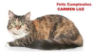 CarmenLuz   Cats Gatos - Happy Birthday
