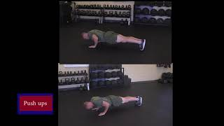 Pushups - Force Fitness