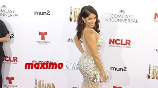 Valery Ortiz | 2014 NCRL ALMA Awards | Red Carpet