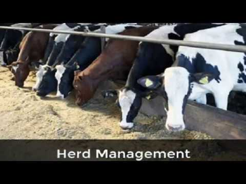 Alan Watt  (Feb 27, 2012) Herd Management For World Managers, Room 101