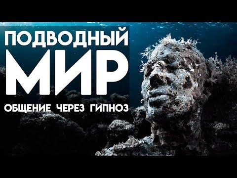 Подводный мир  Общение через гипноз