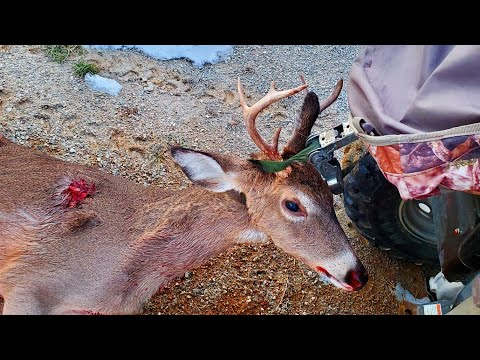BUCK DOWN!! 12 Year Old Self Filmed Bow Hunt 2019!!!