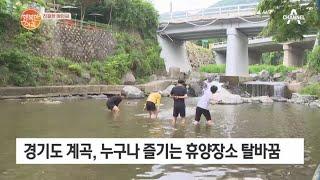깨끗해진 경기도 계곡! | 행복한 아침 604 회