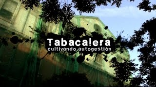 Tabacalera: cultivando autogestión | Documental