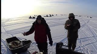 Рыбалка охота за СУДАКОМ КАК оно есть на самом деле Видео отчёт 06 12 2020