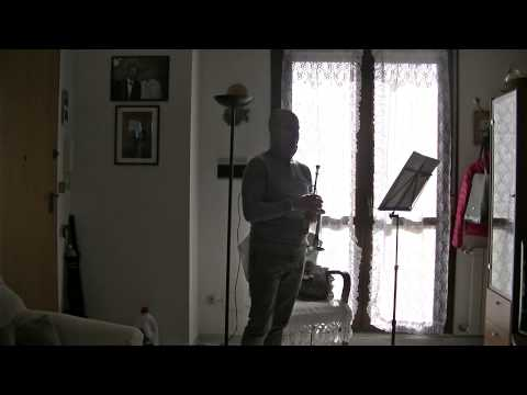 Tartini Concerto in RE magg. per tromba