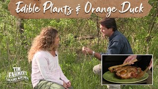 Native Edible And Medicinal Plants (episode #207)