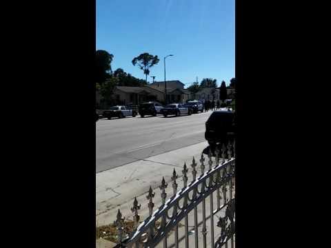 Man killed by police on century blvd south La