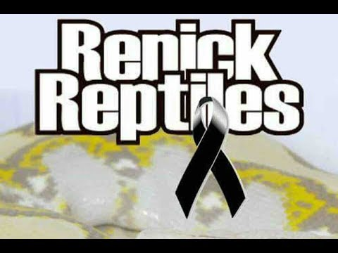 In Memory of Ben Renick of Renick Reptiles - May He Rest In Peace :(