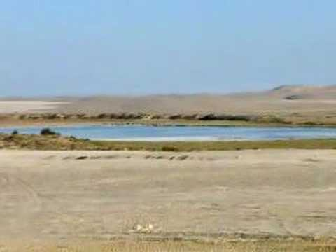 Siwa to The White Desert - Egypt