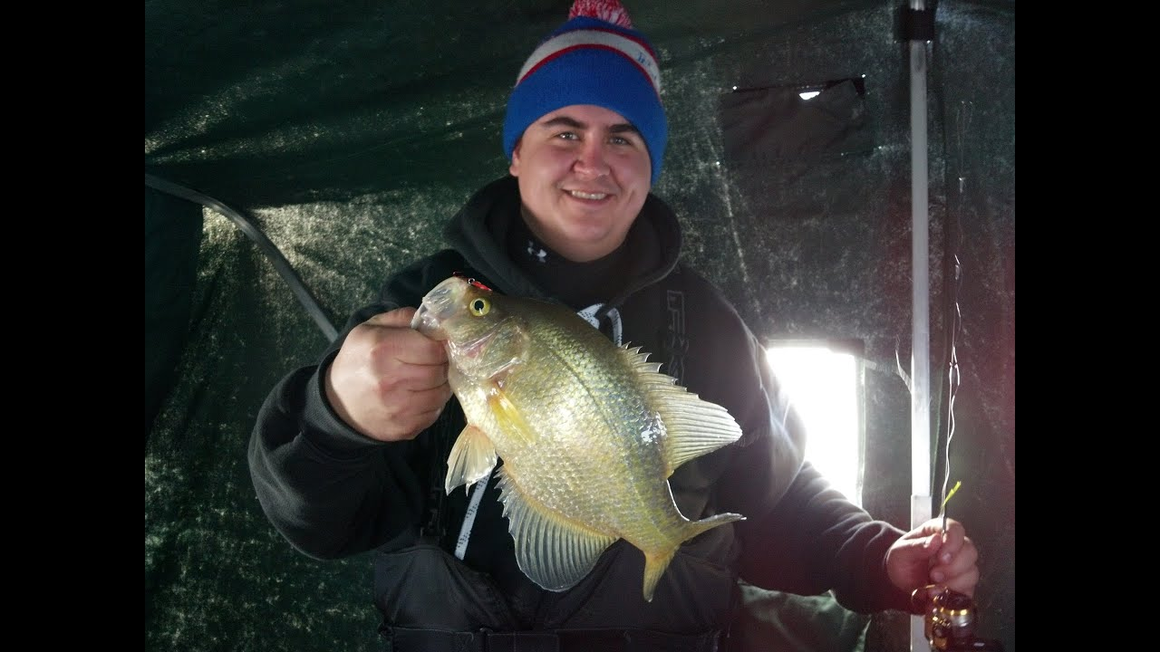 Lake of the woods ice fishing february 2014 crappie for Lake of the woods ice fishing