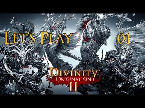 Divinity: Original Sin II - Solo Playthrough Part 1: Act 2 Begins!