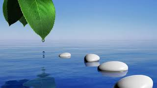 Calming Zen Spa Music To Calm &amp Relax the Body, Mind &amp Spirit Tranqulity PLUS!   YouTube