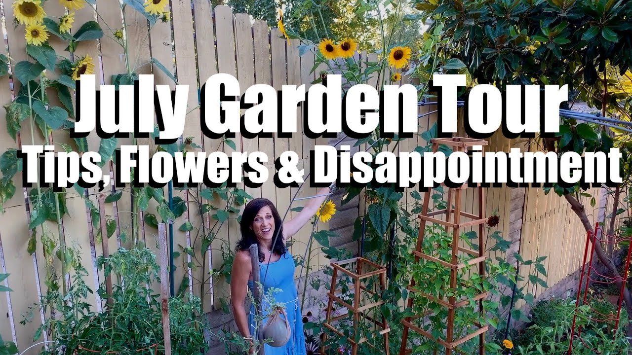 July Garden Tour -  Veggie Growing Tips, Flowers & Huge Disappointment! 🌻🍅