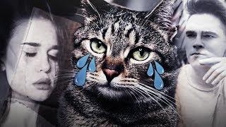 Stuu i Justyna  oddali mi koty .....