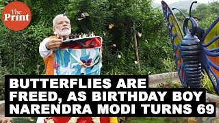 Butterflies are freed, as birthday boy Narendra Modi turns 69