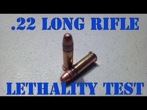 .22LR LETHALITY  300 Yard Ballistics Test
