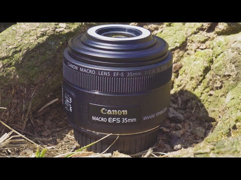Macro Photography with the Canon EF-S 35mm f/2.8 Macro Lens