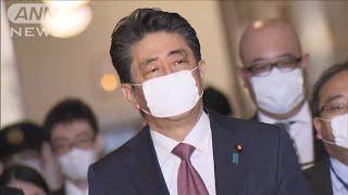 現金給付 1世帯30万円で調整 収入急激減を申告へ(20/04/03)