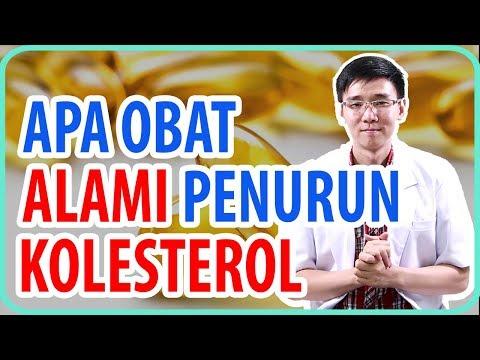apa-obat-alami-penurun-kolesterol