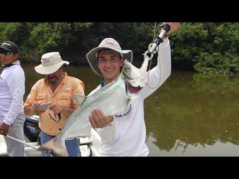 Pesca Puerto Carreño 2017