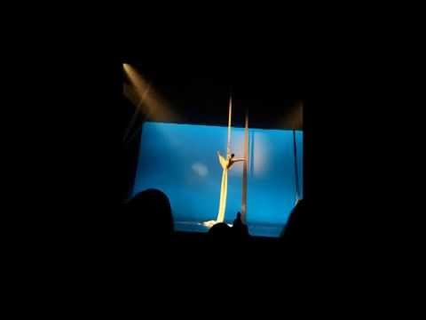 Brandon Hansen Aerial Silks- Chess