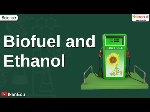 Biofuel and Ethanol
