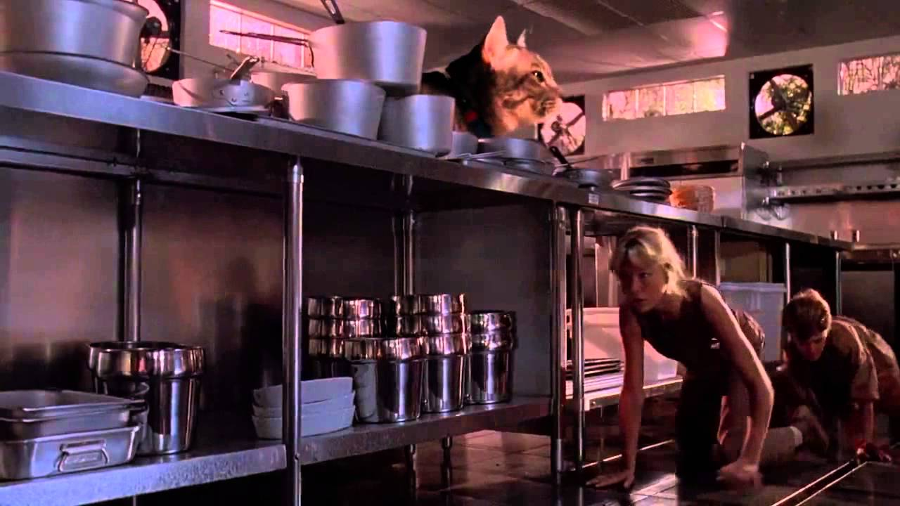 jurassic park kitchen raptor scene   with cats   youtube