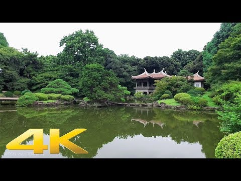 Walking around Shinjuku Gyoen Japanese Gardens, Tokyo - Long Take【東京・新宿御苑】 4K