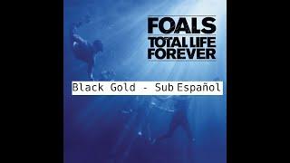 Foals - Black Gold (Sub Español)