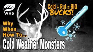 How To Hunt C๐ld Weather Bucks