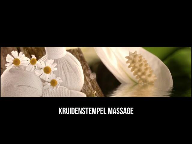 Thuisstudies massage, alternatieve & energetische geneeswijze 1