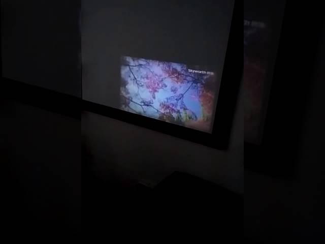 SD20 cheapest mini projector