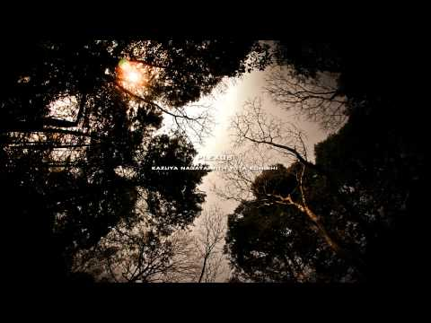Plexus - Kazuya Nagaya & Yuta Konishi - THE MOST RELAXING SOUNDS -