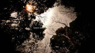 Plexus - Kazuya Nagaya & Yuta Konishi - THE MOST RELAXING SOUNDS -