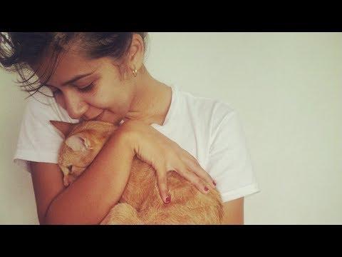 Poliklinika Harni - Pomaže li pas u prevenciji ekcema i astme?