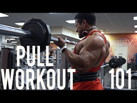 (PPL) PULL WORKOUT FOR MASS 101: BACK AND BICEPS