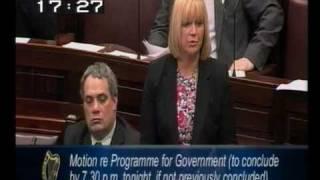 Sandra McLellan - First Speech in Dáil