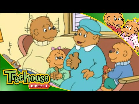 The Berenstain Bears | Weather Change
