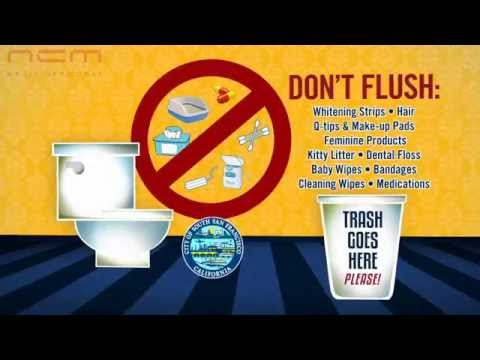 The toilet is not a trash can here 39 s what not to flush youtube - Things never flush ...