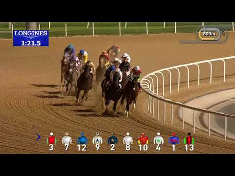2019 Dubai World Cup Race Replay