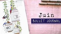 Bullet Journal Juin 2020 | ORGANISATION